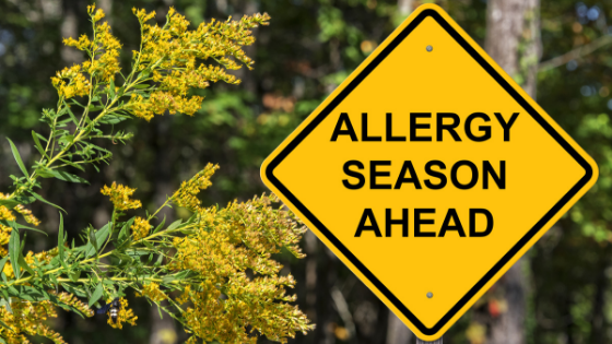 Premier Allergy and Asthma Shares Their Expert Tips On How To Fight Fall Triggers– Sweet Startups