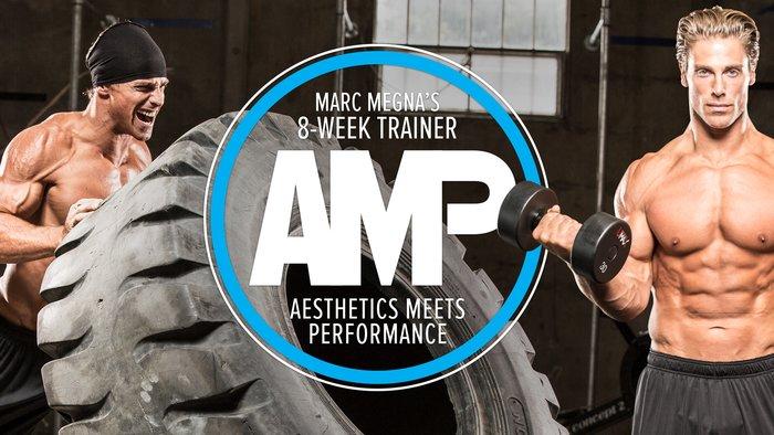 AMP Trainer