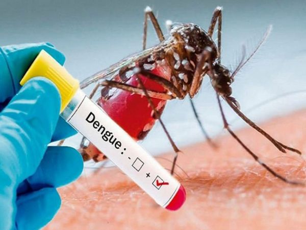 Looking out for dengue this monsoon: Know the symptoms and methods of prevention