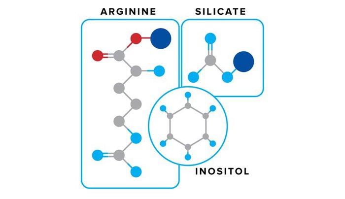 5 Brain-BoostingNootropic Supplements